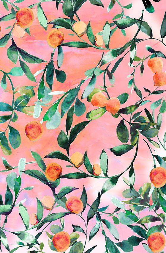 Nikki Strange Orange Tree Prints Fruit Print Watercolor