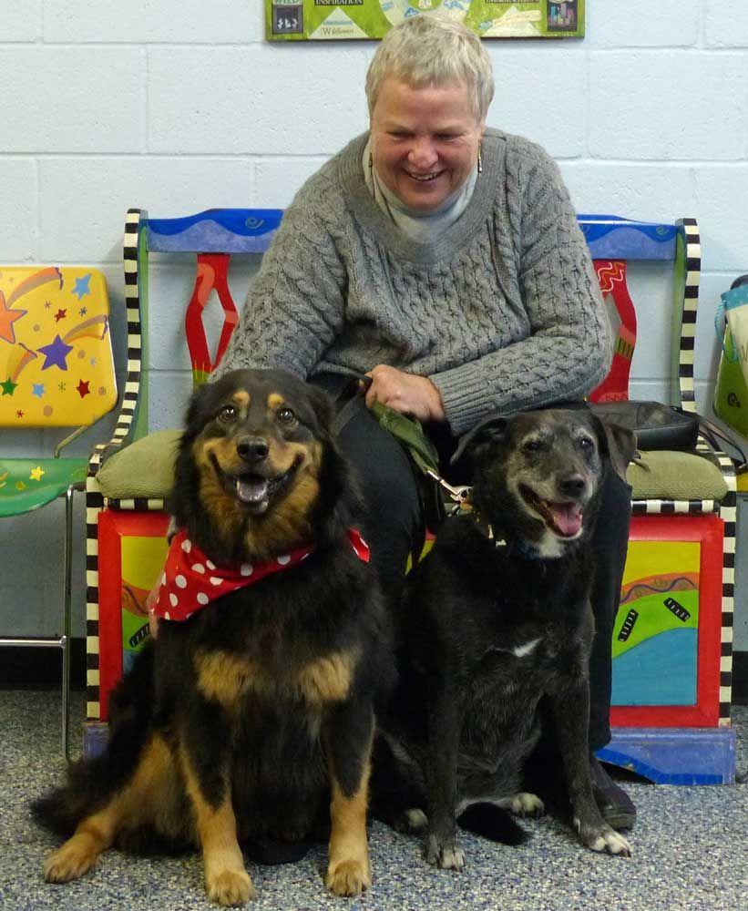CLEO!!!! Labrador retriever, Fur babies, Labrador