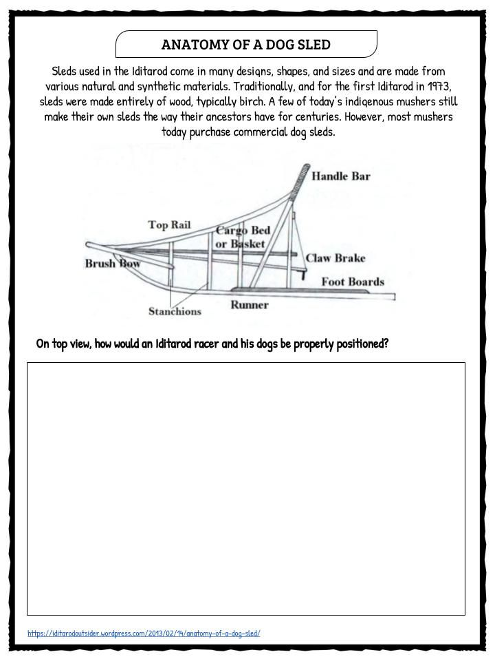 The Iditarod  Facts  Worksheets Includes Lesson Plans