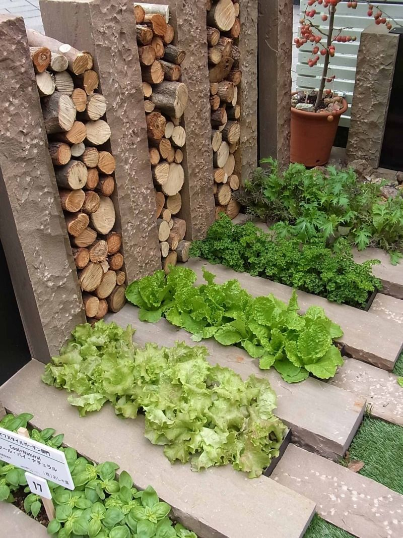 Vegetable Garden おしゃれまとめの人気アイデア Pinterest Niusha