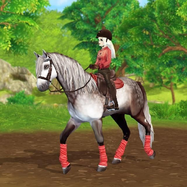Follow Us For More I Already Introduced Him On My Other Account But This Is Badger Outfit Fashion Sty Star Stable Horses Star Stable Horse Riding Gear