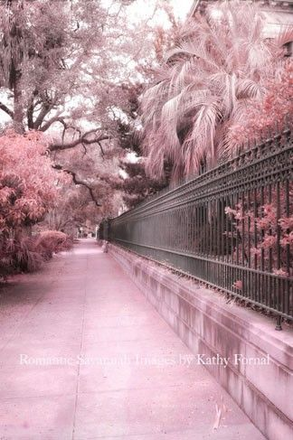 Savannah Dreamy Pink Gated Street Scene; Art Nouveau Canvas Prints -- Artwork: 232 of 864 by Kathy Fornal -- Prints are available for purchase: Canvas print $85, framed print $80, art print is $37, Acrylic Print $137, metal print $111, and Greeting card is $7.95