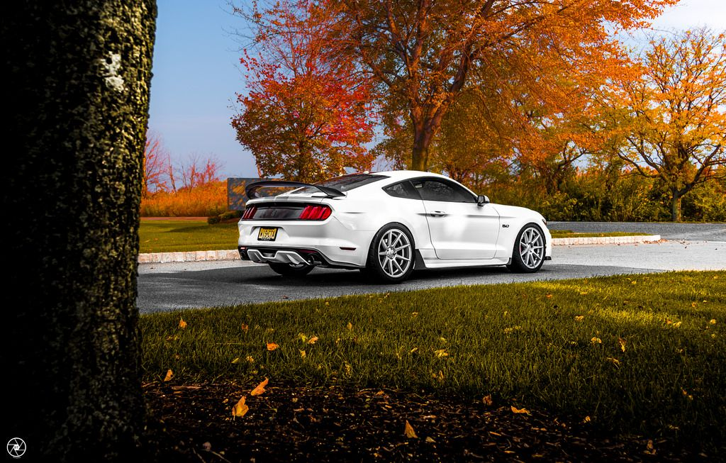 Image Result For Mustangs With Velgen Wheels Mustang Bmw