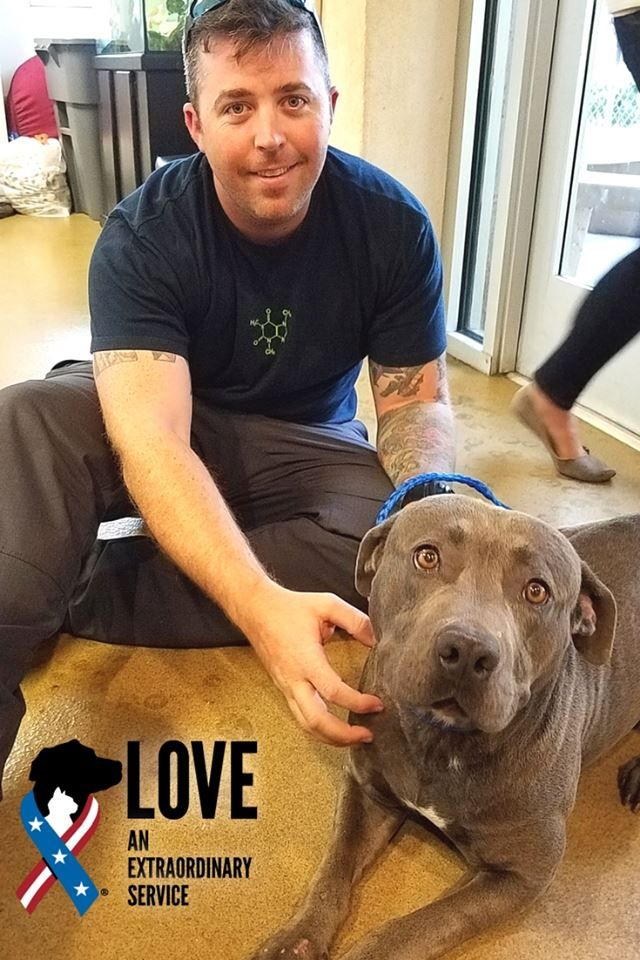 Andrew Is Active Duty Navy And Shadow His New First Mate The Pair Met And Were Adopted Through Our Longstanding Partnership With County Of San Pets Waiting For Love Animals