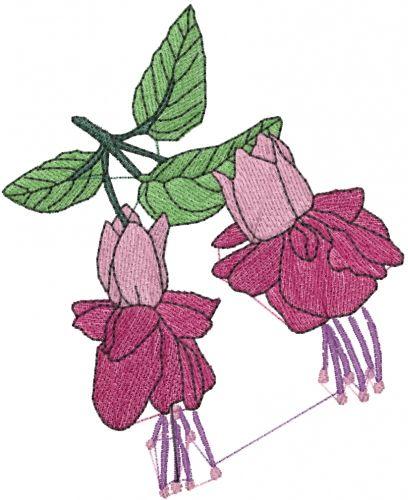 Fuchsia Flower Embroidery Design Annthegran Com Flower Embroidery Designs Machine Embroidery Patterns Silk Ribbon Embroidery