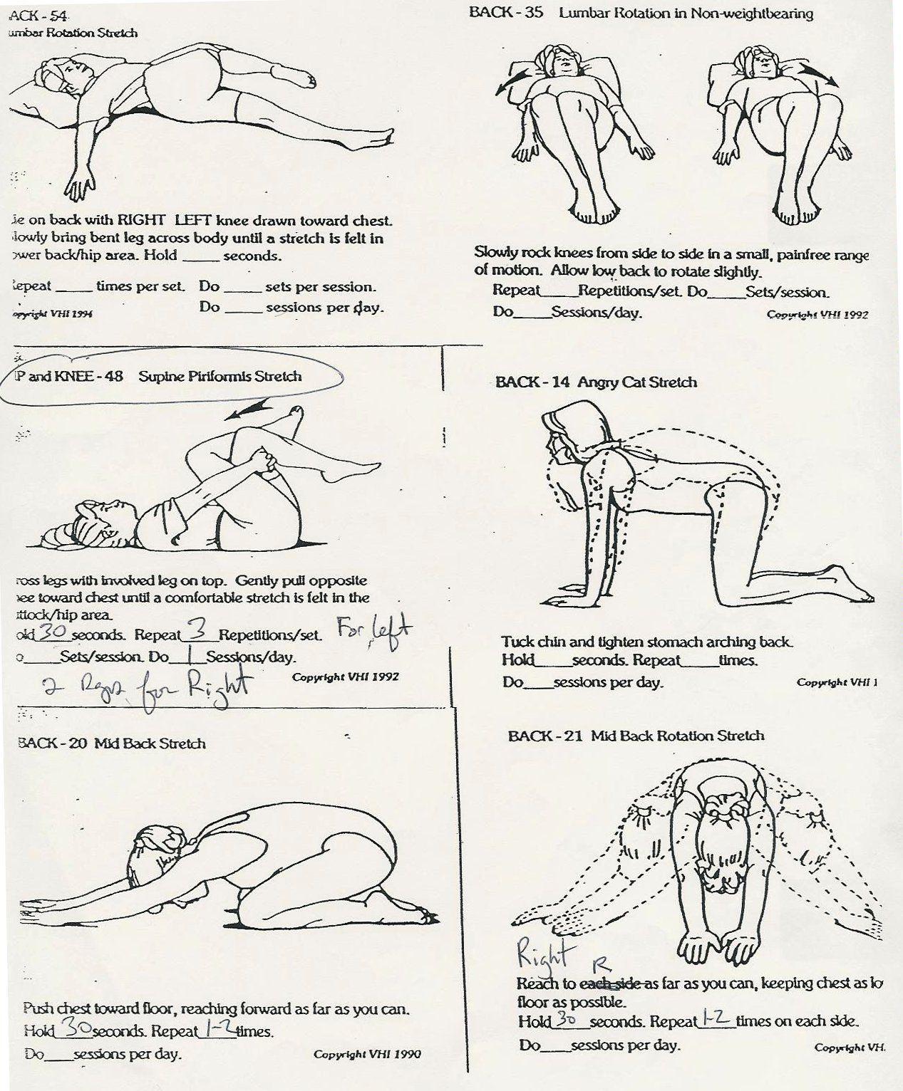 piriformis exercises   Supine Piriformis Stretch   Shape ...