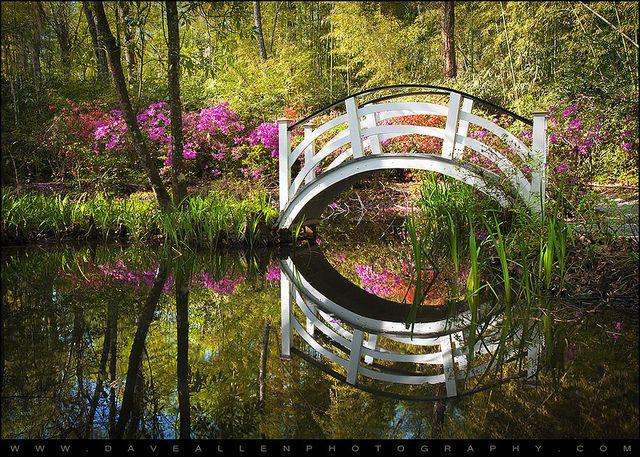 7cc0fa7f8b6dfaf02abc30d481fbbc42 - Magnolia Plantation And Gardens Charleston Sc 29414