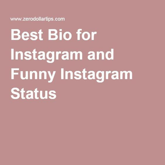 Best Bio for Instagram and Funny Instagram Status | INSTA ...