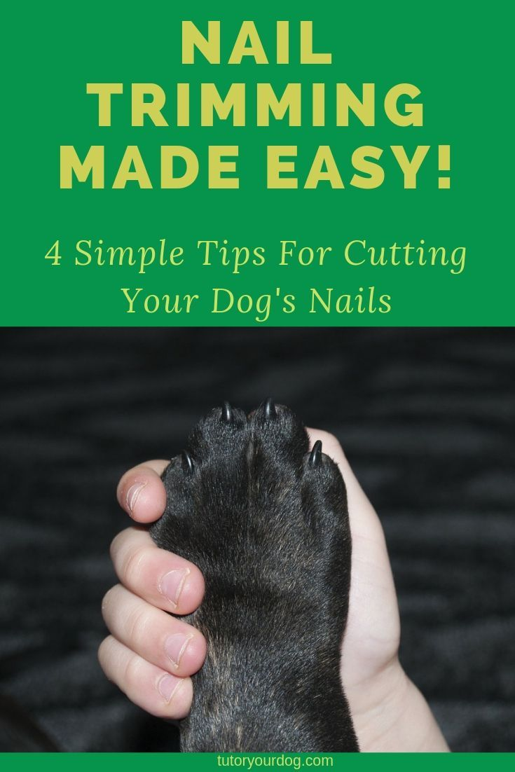 how to sedate a dog for nail clipping