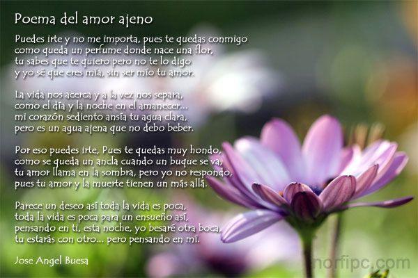Poema del amor ajeno de jose angel buesa poemas versos - Amor en catalan ...