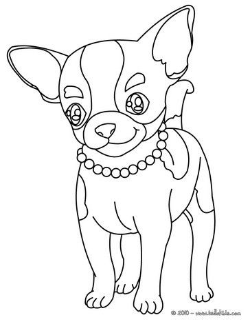 Cute Chihuahua Coloring Page Nice Dog Drawing For Kids More Animals Coloring Pages On Hellokids C Dog Coloring Page Animal Coloring Pages Baby Coloring Pages