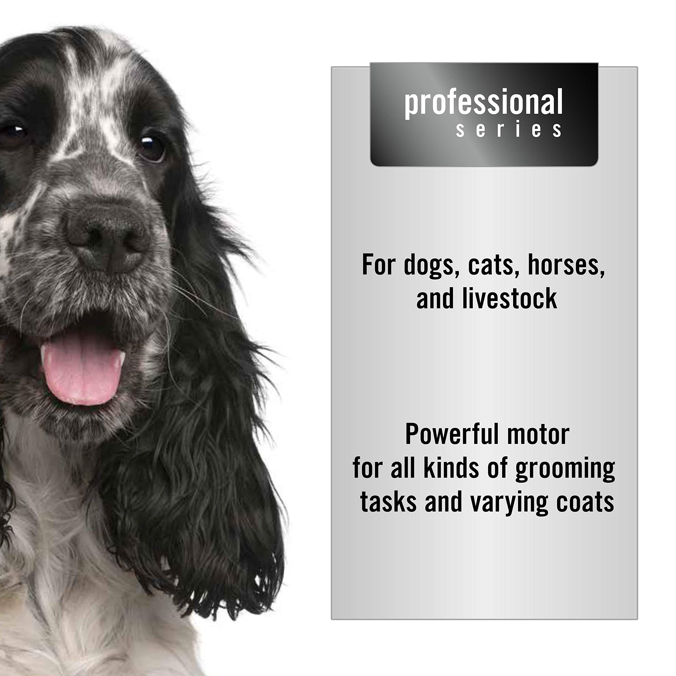 Oster Pet Clippers A5 2speed Animal Grooming Clipper With Detachable Cyogenx Blade Want To Know More Click On Grooming Dog Grooming Dog Grooming Supplies