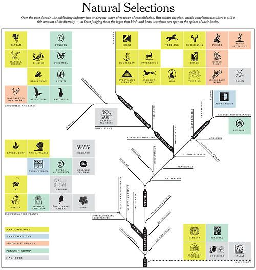 Natural Selection diagram (process/flow chart) OneFive inspiration