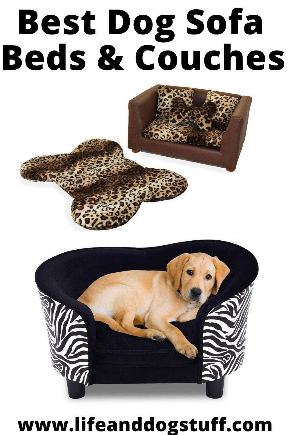 Earthy Dogs Accessories People Dogfoodrepack Dogsaccessoriesboy