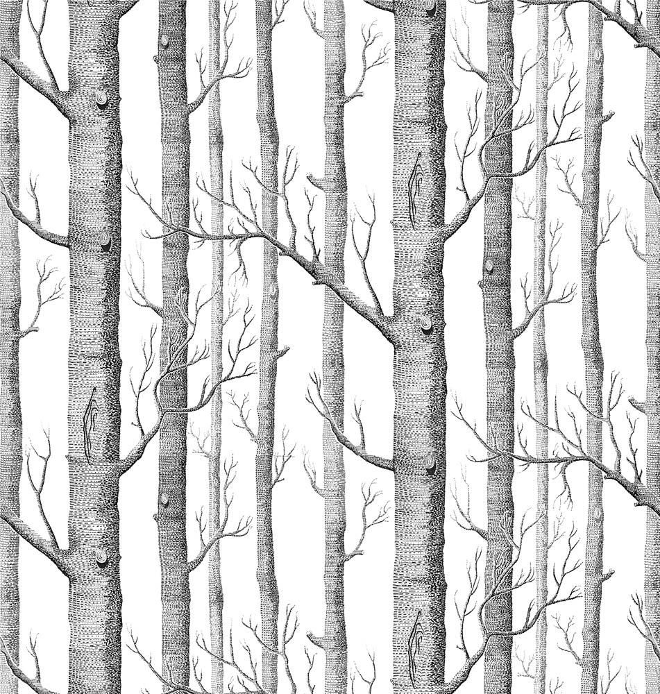100 birch tree wall mural woods wallpaper birch tree birch tree wall mural background from birch trees without leaves custom wall decals
