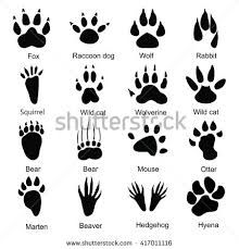 Image Result For Paw Print Or Footprint Rabbit Or Bunny
