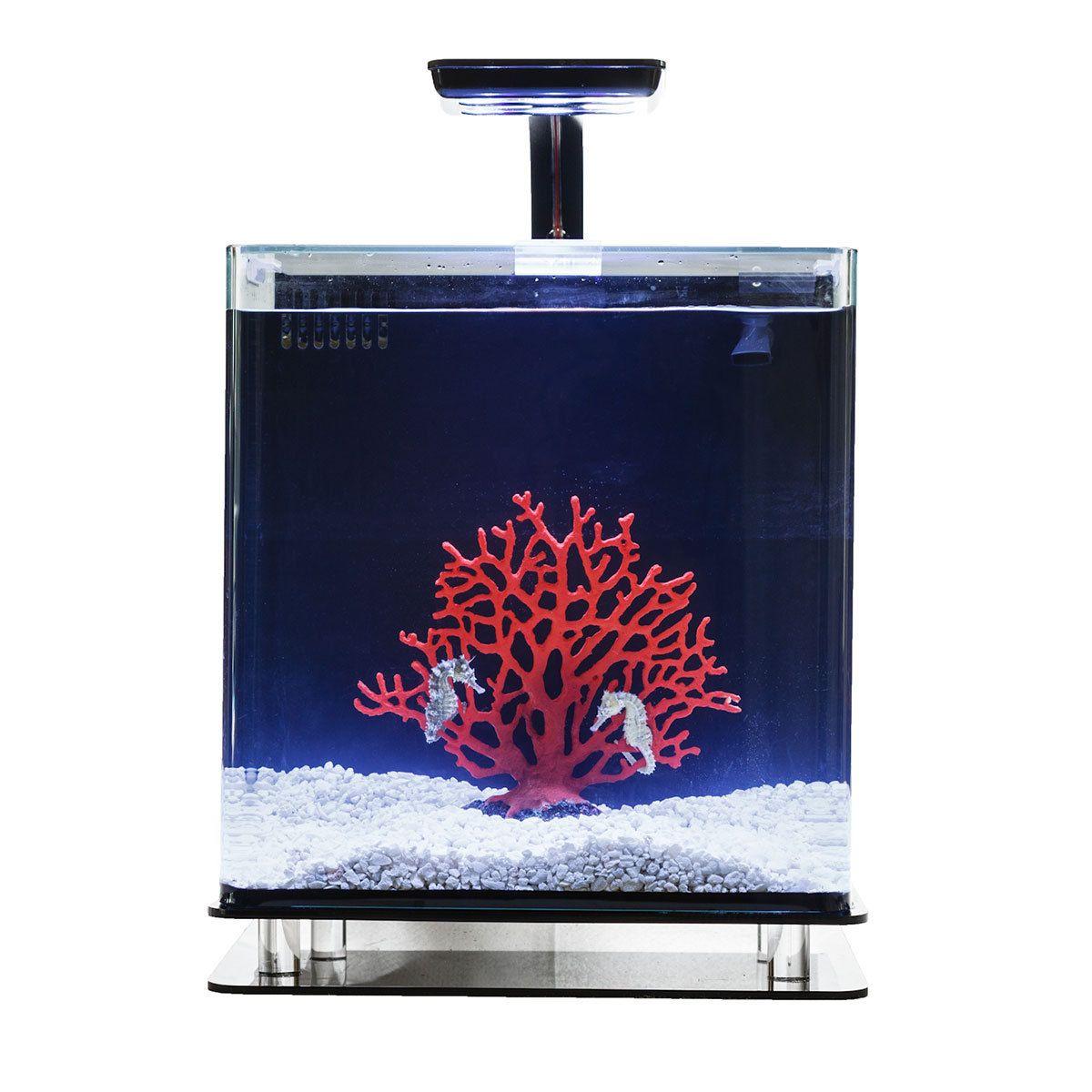 Aquarium fish tank complete system - Serene Seahorse Systems Seahorses Aquarium Complete Kits