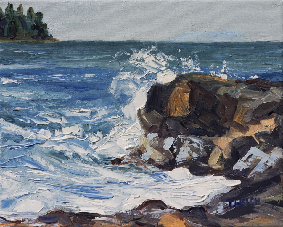End of Storm Georgina Point Mayne Island 8 x 10 oil on canvas by Terrill Welch