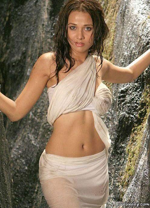 Sexy Actress Nisha Kothari In Hot Wet Saree