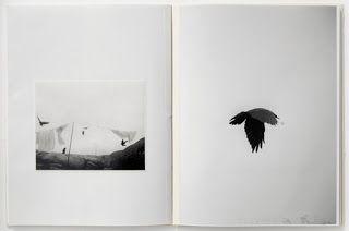 """""""Ein See ist immer ganz in der nähe"""": Raymond Meeks Nevermore"""
