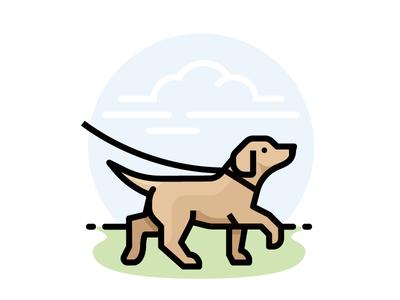 Dog Walking Outdoors Caes Ideias Instagram Pet Shop