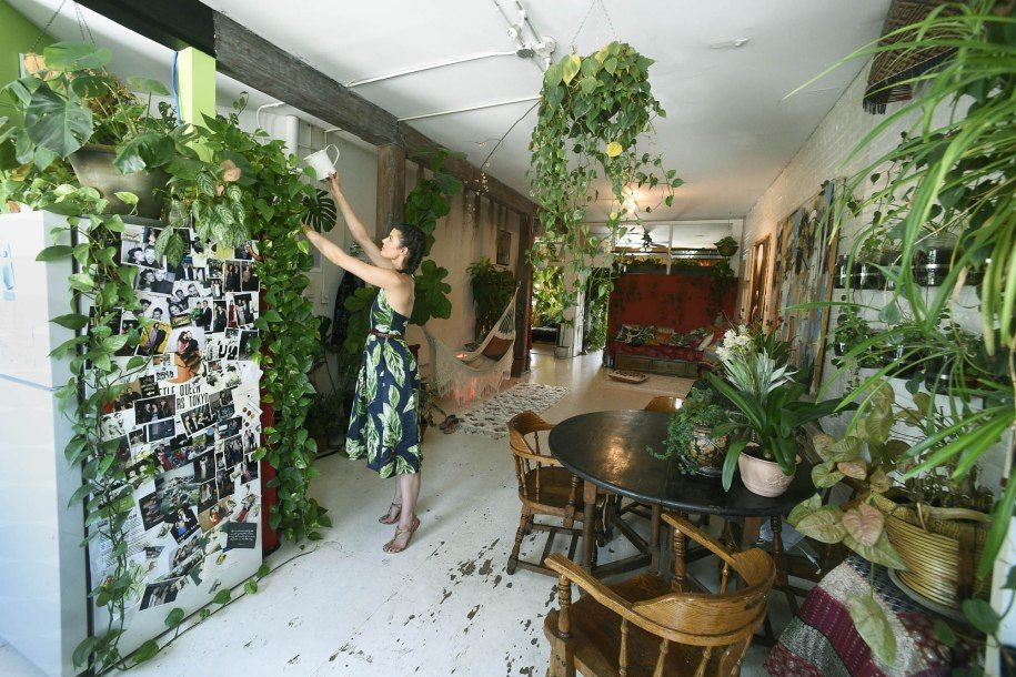 Summer Rayne Oakes' Williamsburg loft is bursting with more than 500 plants  | Room with plants, Plants, Plant decor