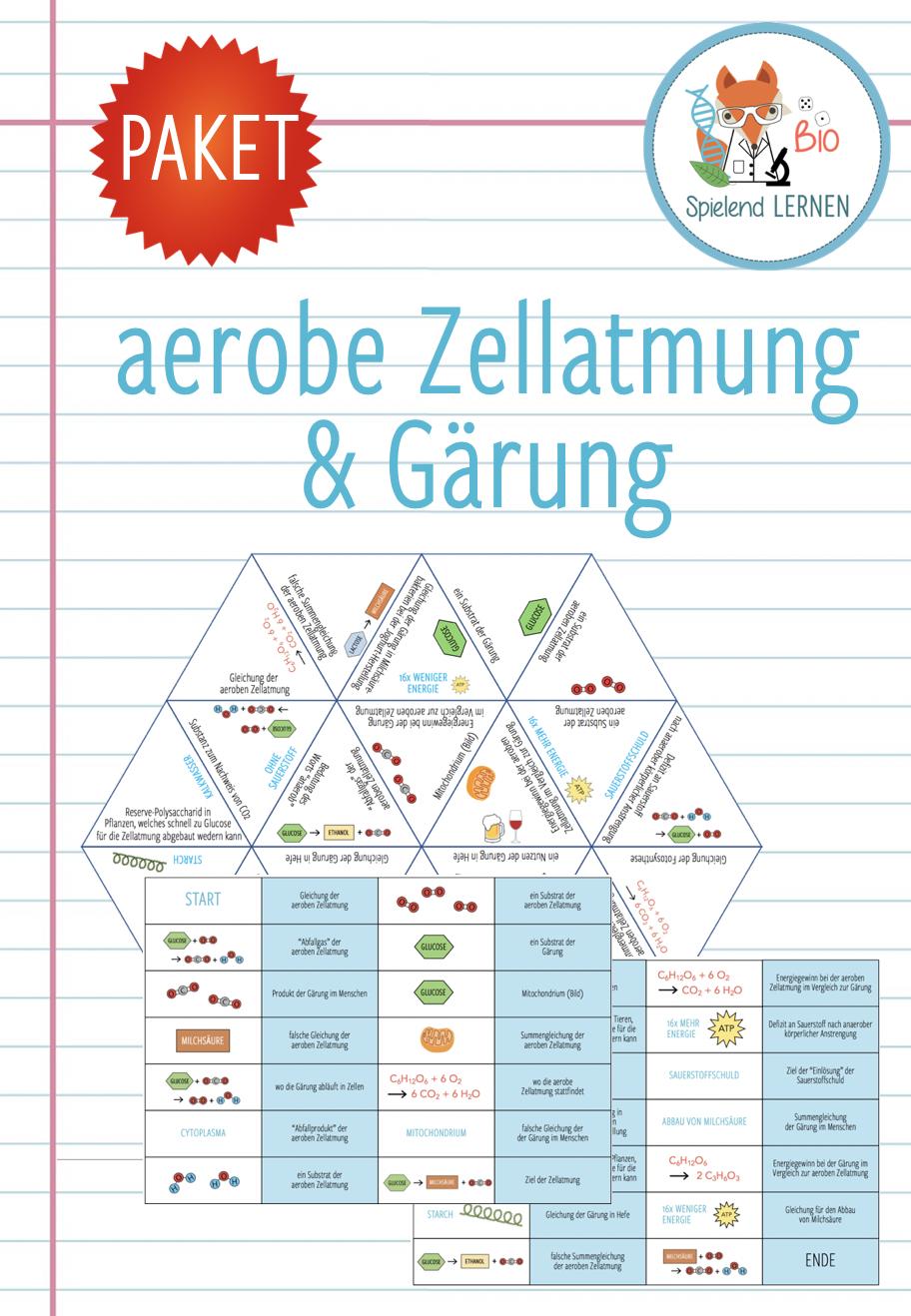 Aerobe Zellatmung und Gärung   20x Aktivitäten und Spiele   Gärung ...