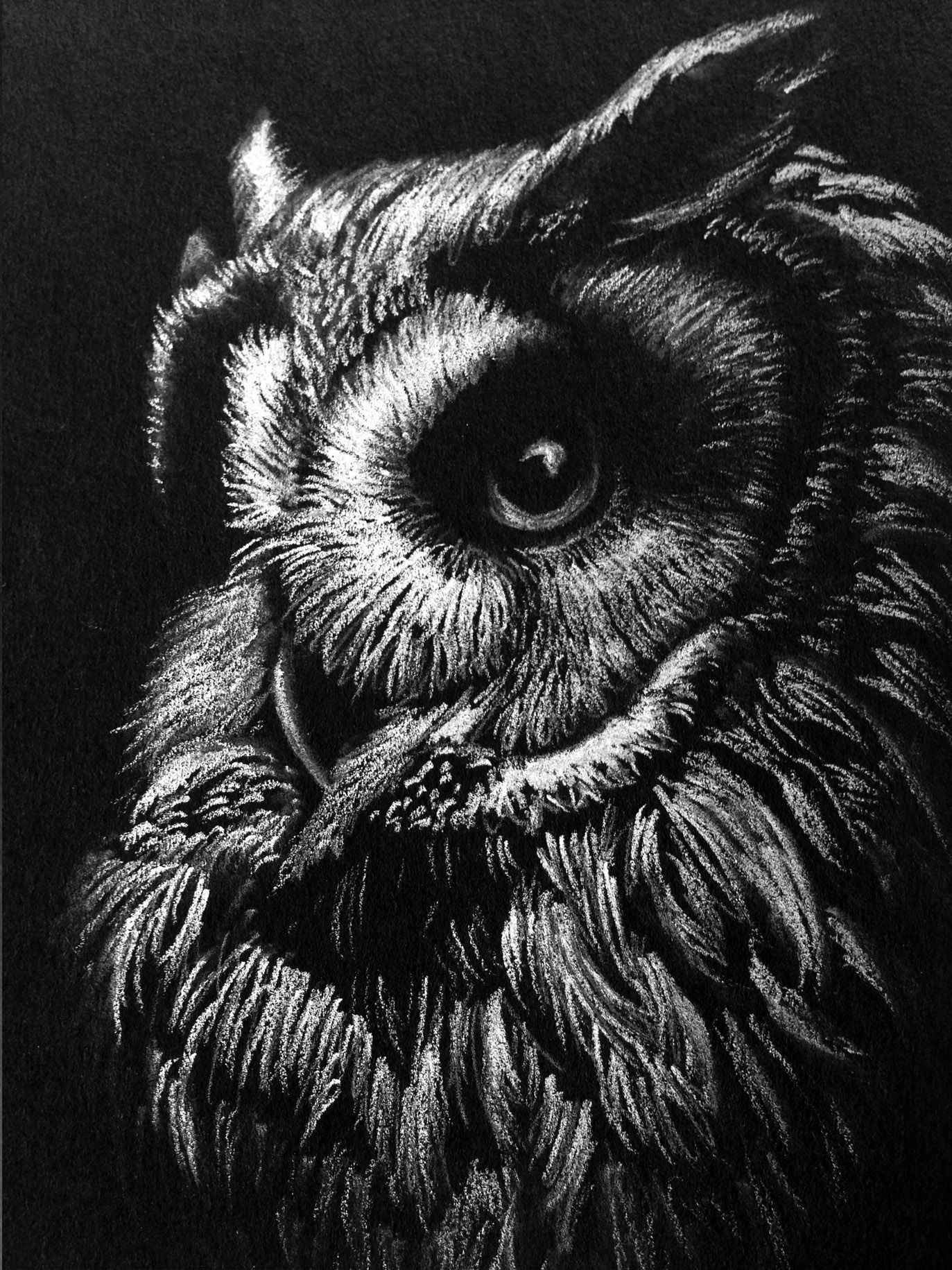 Black paper drawing · white charcoal sketch by mealieart com charcoal sketch charcoal art white charcoal