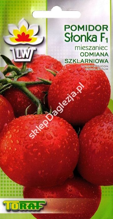 Pomidor Szklarniowy Slonka F1 0 2g T Fruit Food Orange