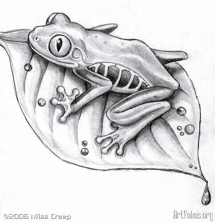 tree frogs drawings - Google Search | Art Ed- Frogs ...