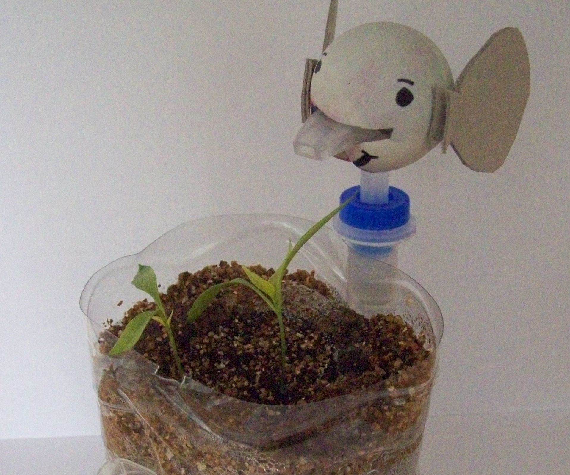 how to make a hydroponic herb garden
