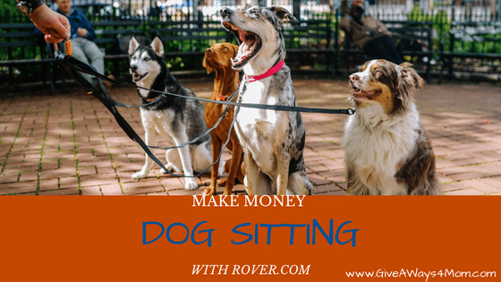 Make Money Dog Sitting With Rover Com Work From Home Life