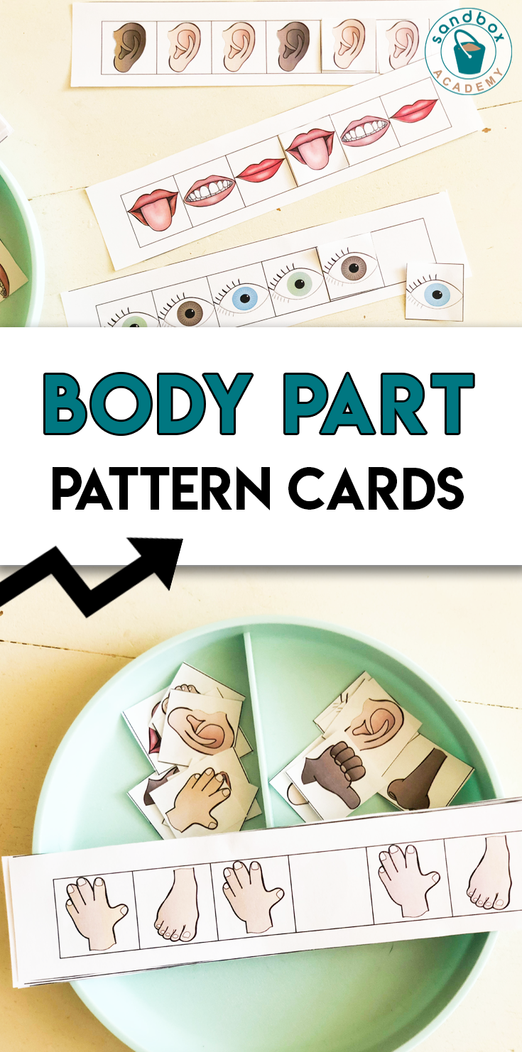 Pin on Human Body and All About Me Preschool Activities