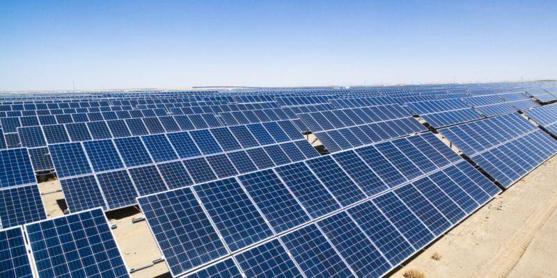 Swiss Investor Takes On China In Bid To Reboot Eu Solar In 2020