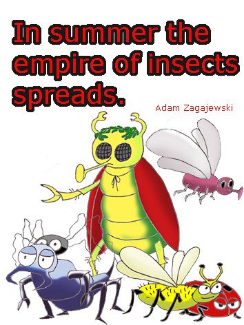 Picture quote about the hordes of insects in summer