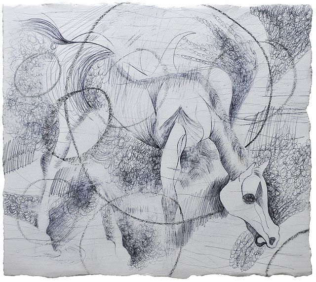 "BlackAndWhite Horse / Ink, pastel, and charcoal on paper / 10.5 x 7.25"" / 2008"
