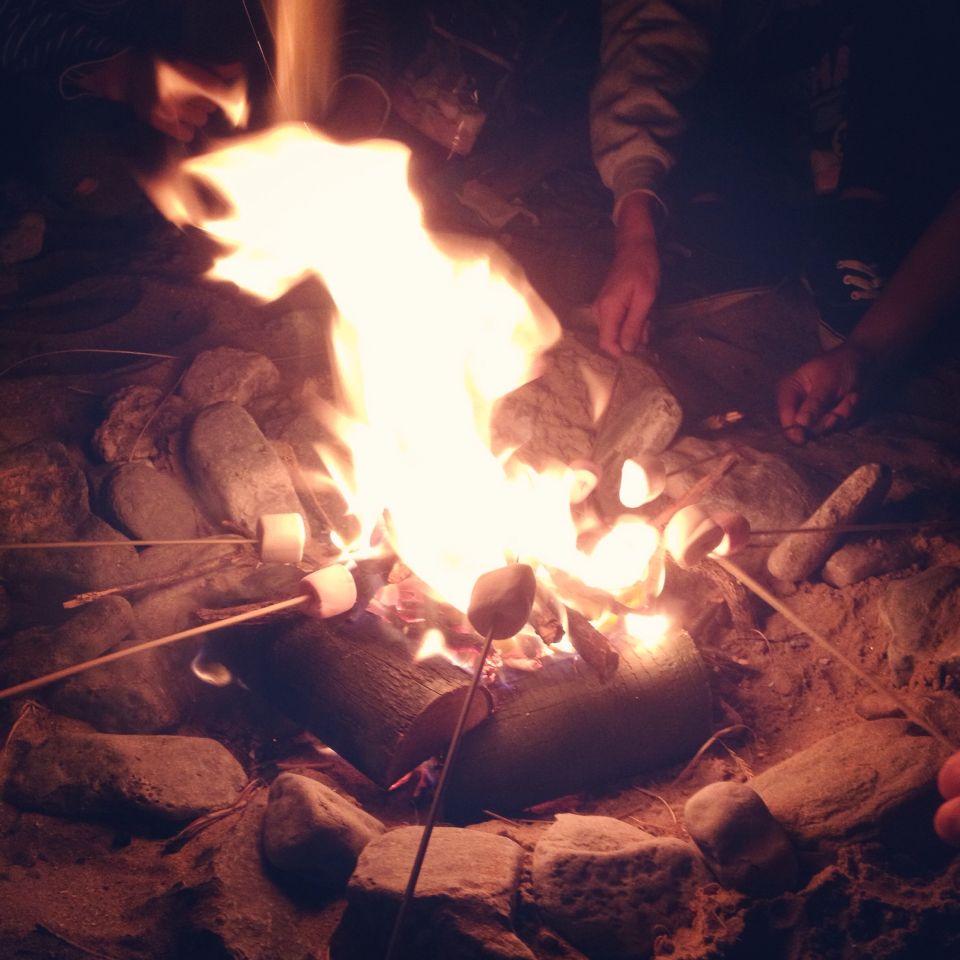 Gower bonfire