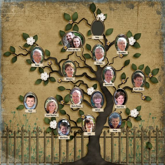 Category Scrapbooking Family Tree Project Family Tree Art Family Tree Designs