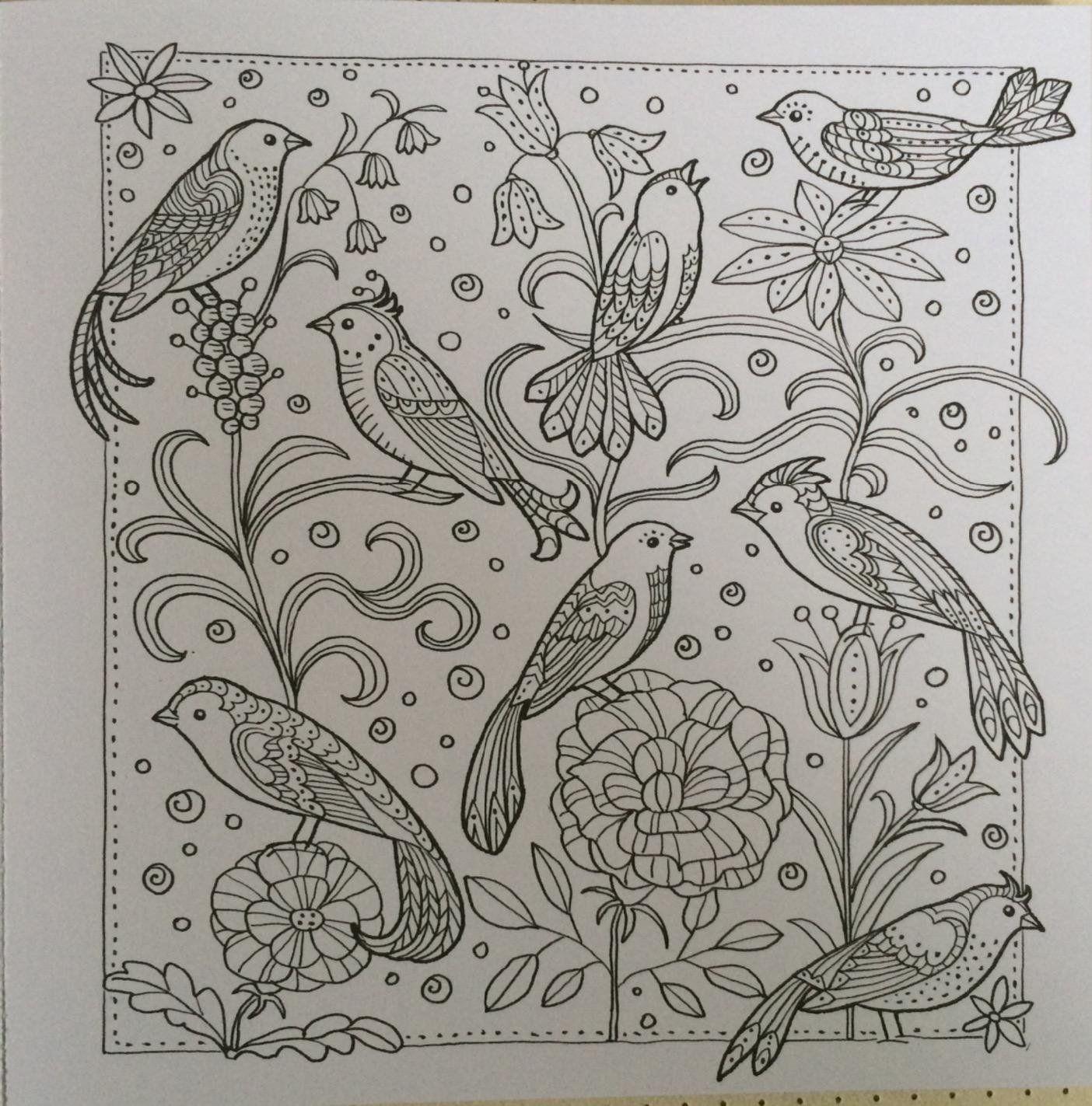 Zencolor moments Vögel & Schmetterlinge: Amazon.de: Schwab Ursula ...