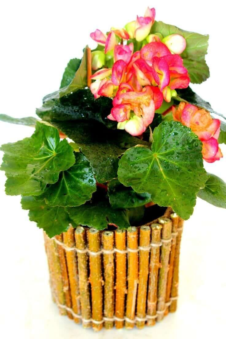 Diy Twig Flower Pot Tutorial Twigs Are Easy To Find And So Much Fun To Work With Gather A Bunch And Make Yoursel Rustic Flowers Flower Pots Diy Food Recipes