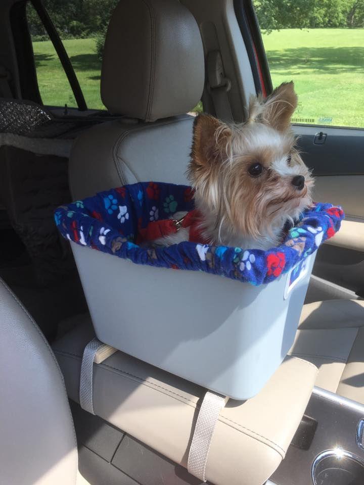 I Make Custom Small Dog Console Car Seats Seat