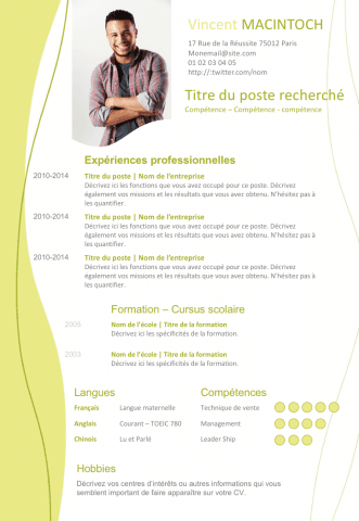 250 Exemples De Cv Curriculum Vitae A Telecharger Creer Un Cv Resume Template Resume It Cv