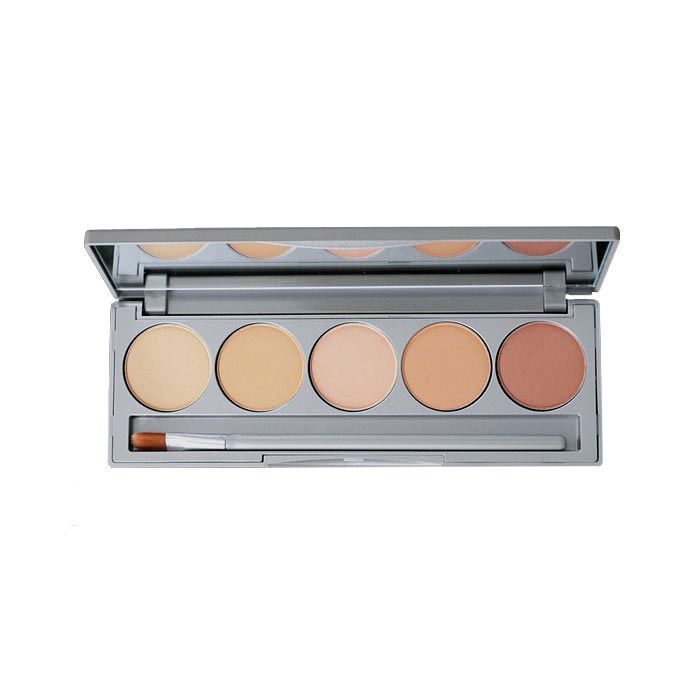 Colorescience Mineral Corrector Palette with SPF 20 (With