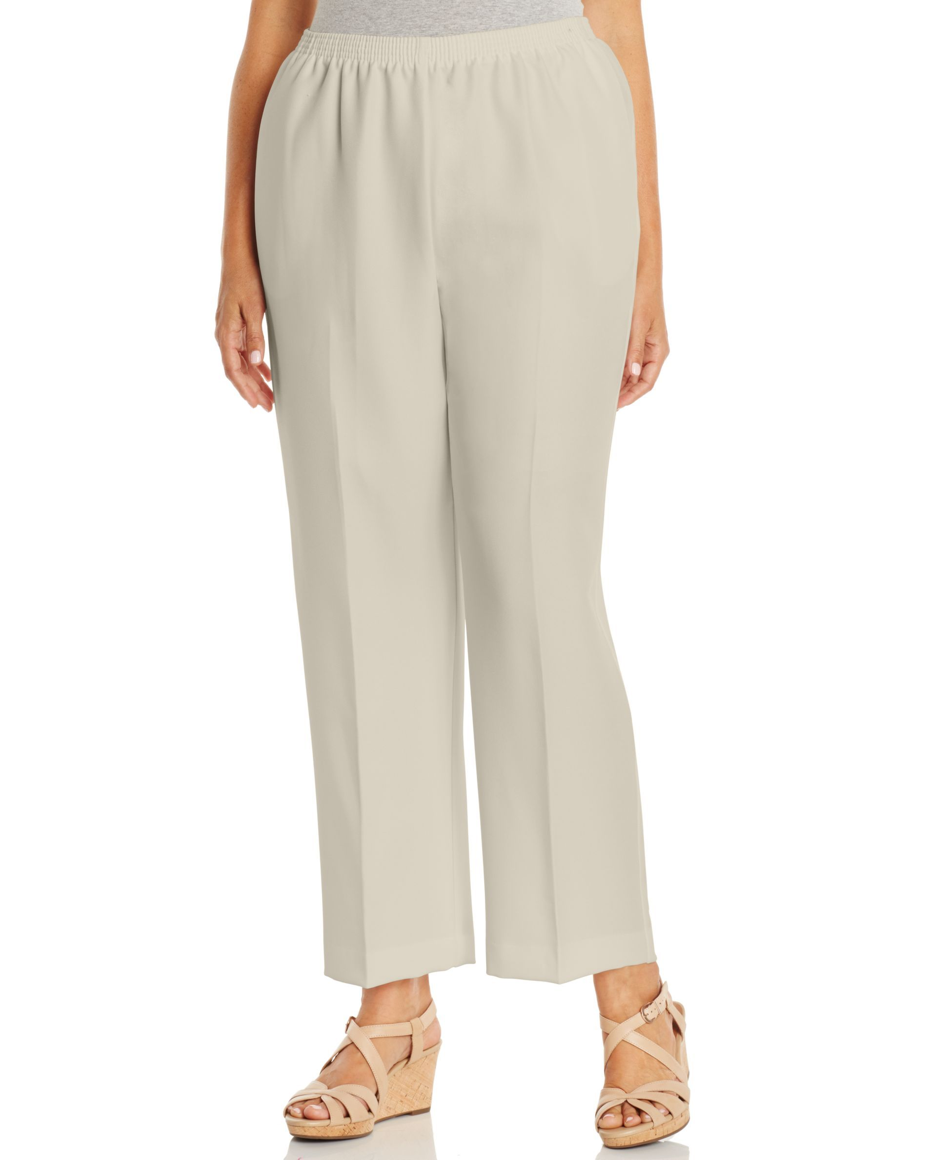 47fe931d02420 Alfred Dunner Plus Size Pull-On Straight-Leg Pants