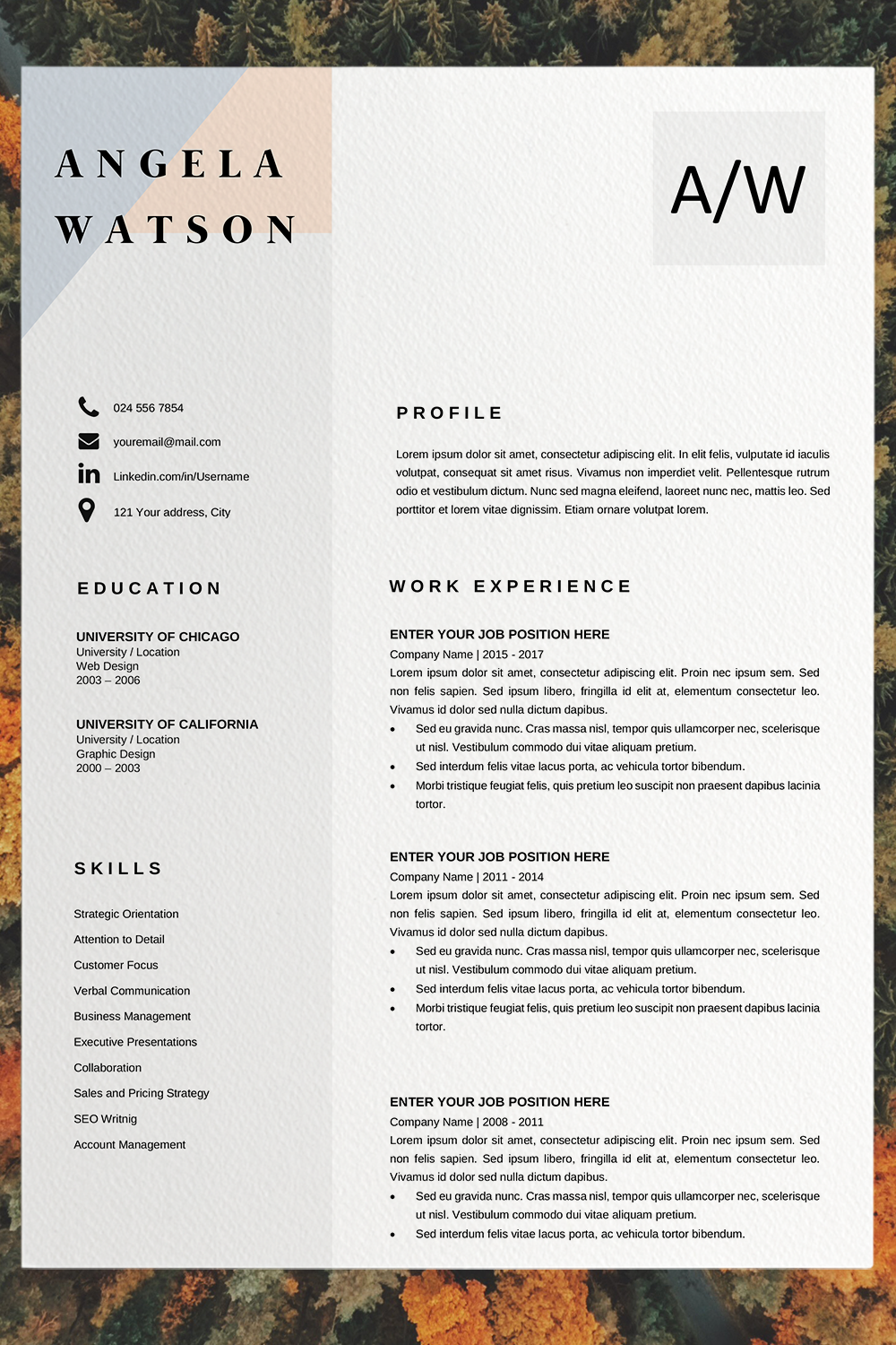 Professional Cv Template Word Resume Template Instant Download In Pages Resume Template Microsoft Word Professional Cv Design In 2021 Cv Template Word Resume Template Word Resume Template