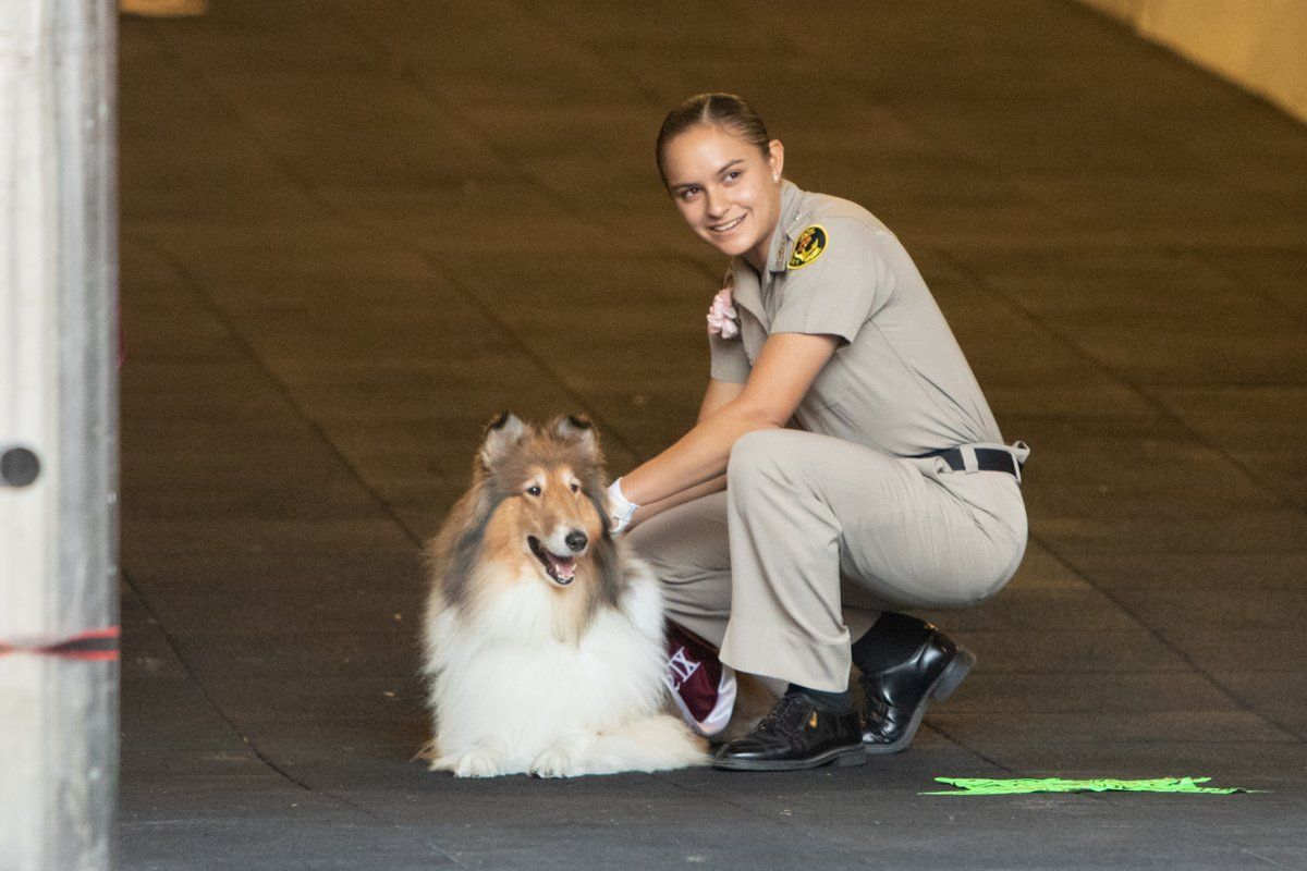Miss Reveille Ma Am And Her Mia Waiting To Lead The Aggies Onto Kyle Field College Pride Kyle Field Sheltie