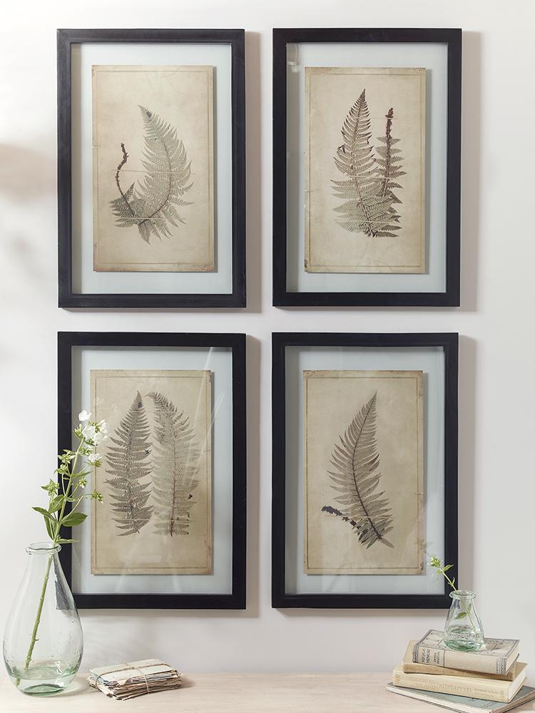 new four framed botanical prints ferns wall art decorative home indoor living