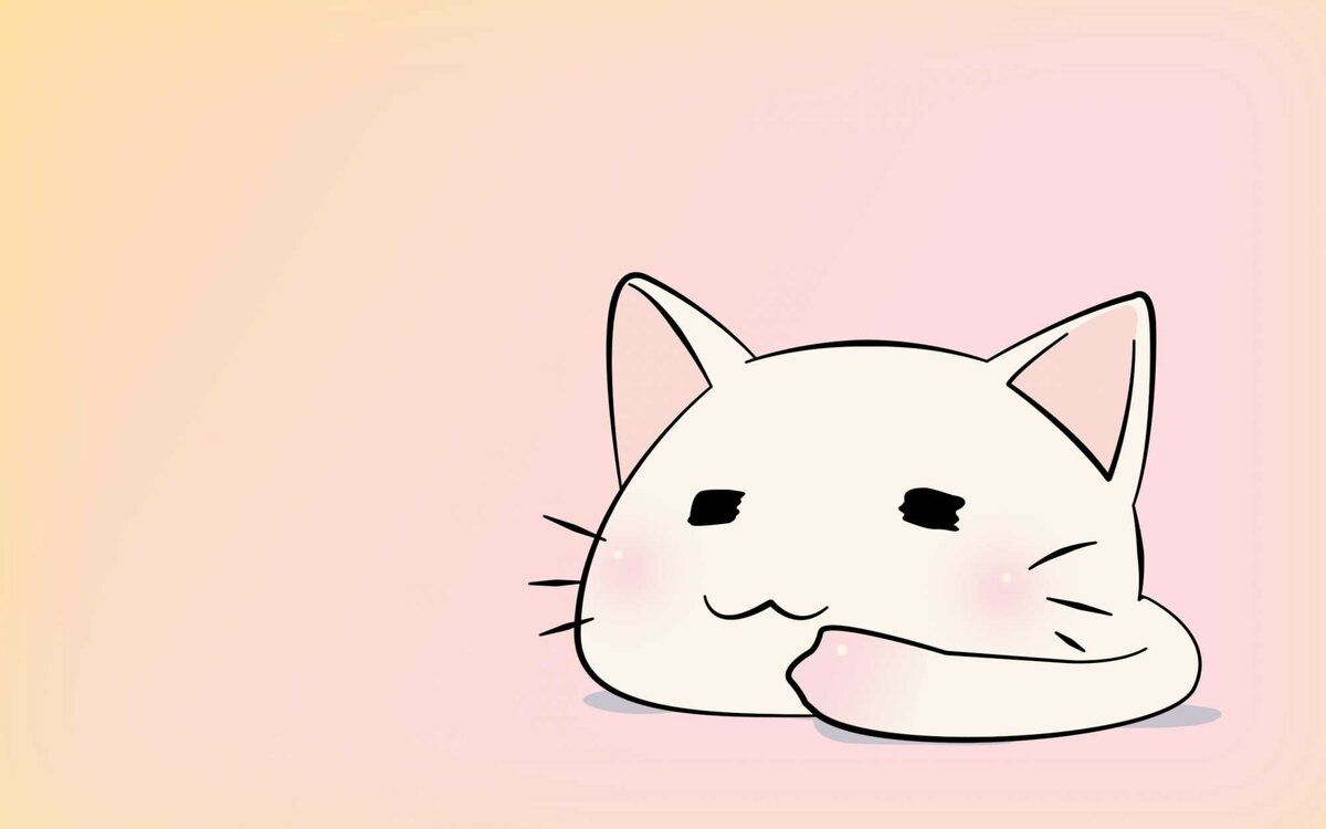 Anime Cat Wallpaper Hd Check The Best Collection Of Hd Anime Cat Background For Desktop Laptop Tablet And Mobile Chibi Cat Cute Anime Cat Hd Anime Wallpapers
