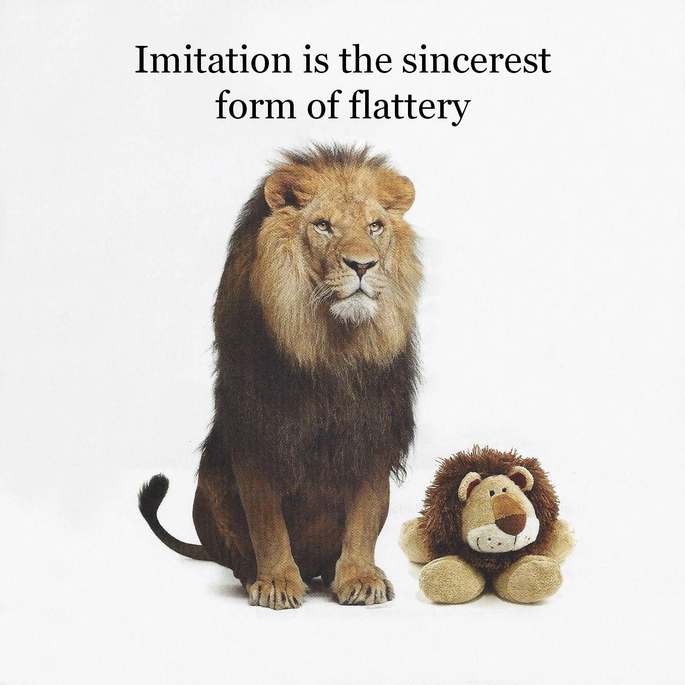 imitation is the sincerest form of flattery - Google Search | LiFe ...