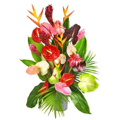 Bouquet exotique  14 anthuriums hybrides variés 4 alpinias 4 héliconias 2  roses de porcelaine et